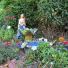 water goddess in 5 element flower garden
